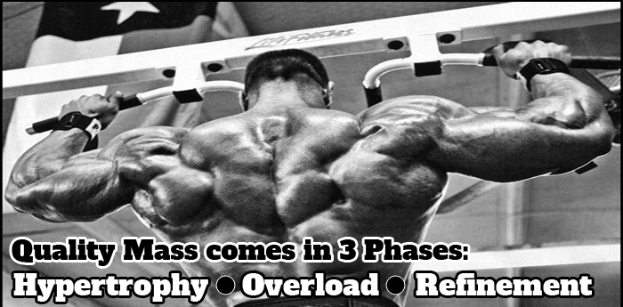 3 Phase Mass Workout
