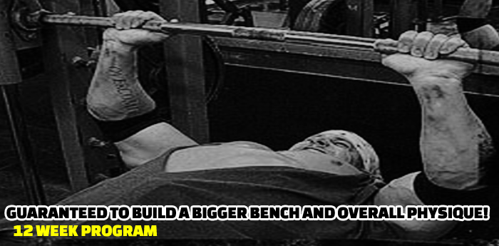 Banging The Bench: Routine #1